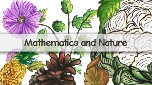 mathematics and nature