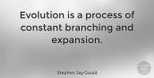 evolution as a process